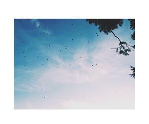 freedom, panorama, and sky image