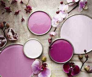 morado, orchid, and pink image
