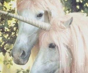 unicorn, horse, and black and white image