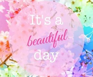 beautiful, day, and flowers image