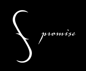 book, promise, and vampire academy image