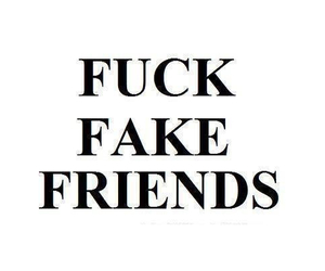fff, fuck, and fake friends image