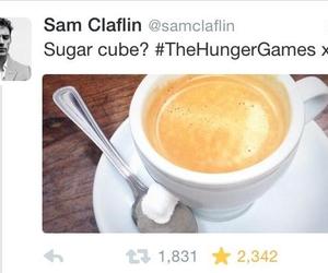 cube, Sam, and sugar image