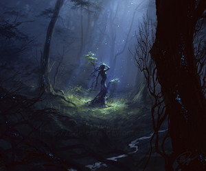 forest and fantasy image