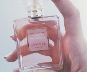 fashion, chanel, and perfume image