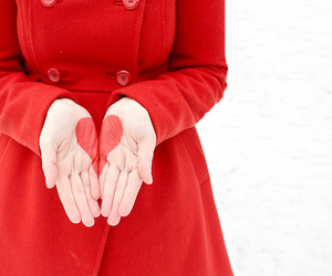 heart, red, and hands image