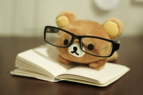 cute, book, and bear image