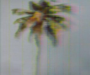 grunge, palm, and soft grunge image
