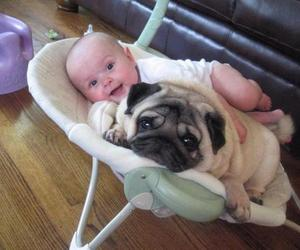 dog, baby, and puppy image