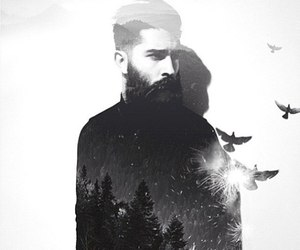 beard, bird, and forest image