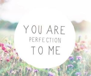 love, perfection, and quote image