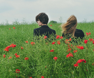 flower, hair, and poppy seed image