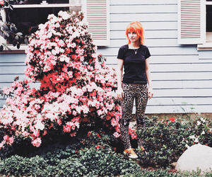 hayley williams, paramore, and flowers image