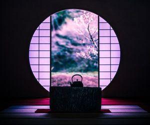 japan, pink, and japanese image