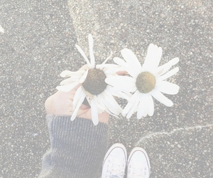 flowers, hipster, and grunge image