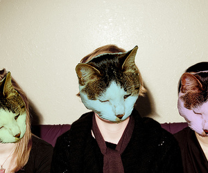 cat and mask image