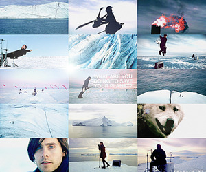 30 seconds to mars, 30stm, and animal image