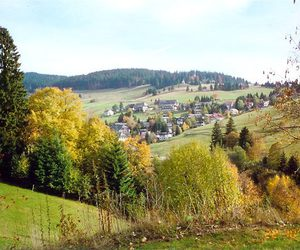 black forest, deutschland, and germany image