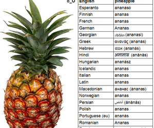 funny, ananas, and pineapple image