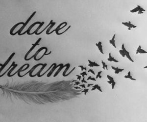 Dream, bird, and dare image