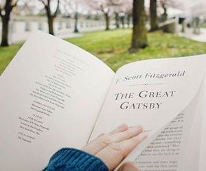 book, the great gatsby, and spring image