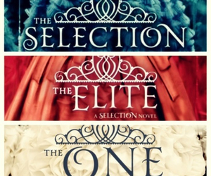 the selection and books image