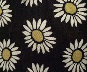 daisy, rue 21, and flowers image