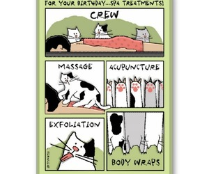 cat, happy birthday, and spa greeting card image
