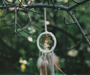 dreamcatcher, nature, and photography image