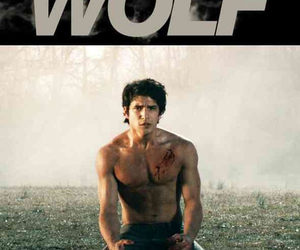 werewolf, guy, and Hot image