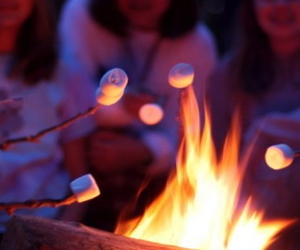 camp, marshmallows, and ymmy image