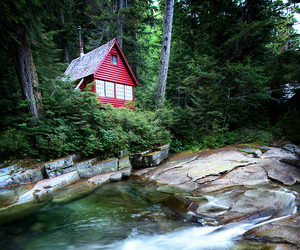 cabin, forest, and river image