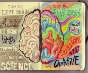 brain, right brain, and funny image