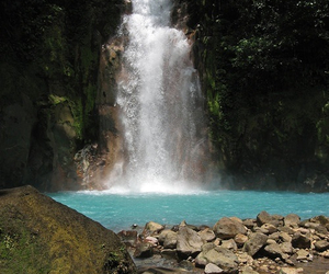 nature, tropical, and water image