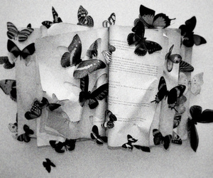 butterfly, book, and black and white image