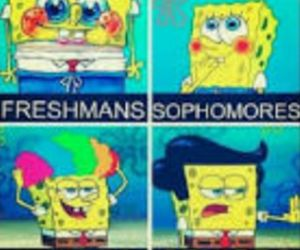spongebob, funny, and junior image
