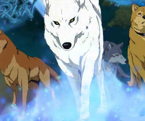 wolf and wolf's rain image