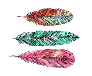 feather, colorful, and colors image