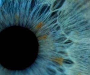 eye, blue, and eyes image