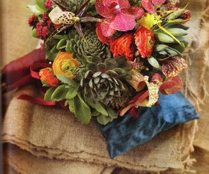 flowers and succulents image