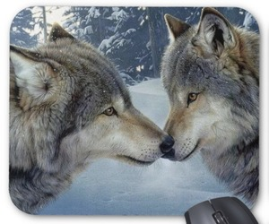 kissing wolves mouse pad image