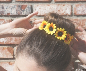 flowers, hair, and daisy image