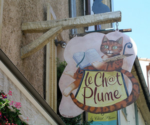 cat, french, and summer image