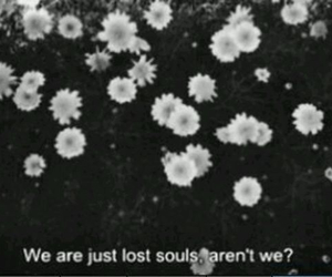 flowers, soul, and lost image