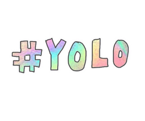 yolo and overlays image