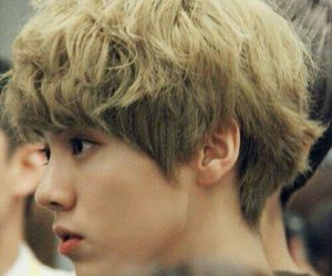 exo, luhan, and exo m image