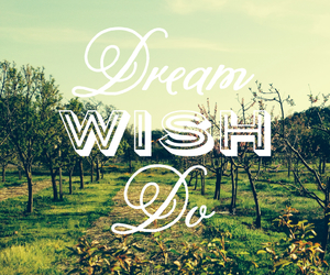 Dream, wish, and do image