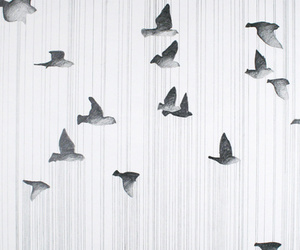 bird, wallpaper, and art image
