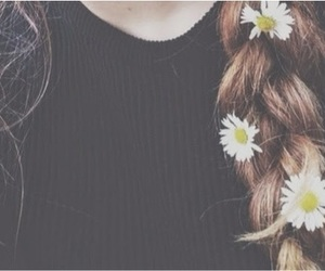 hair, braid, and daisy image
