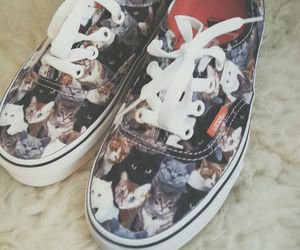 cat, shoes, and vans image